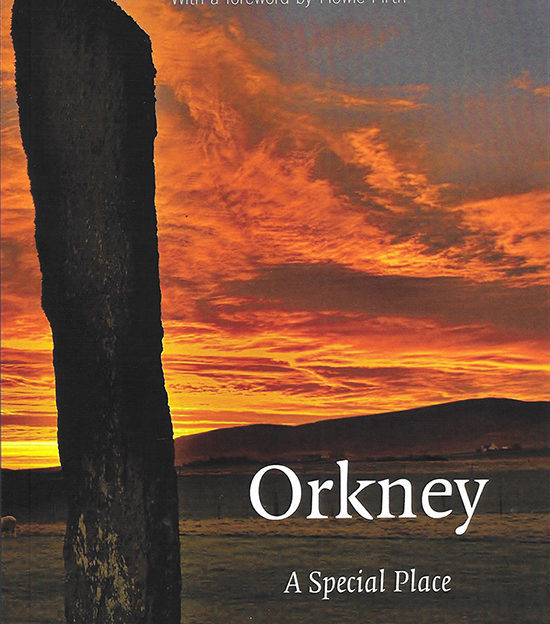 red sky at morning book summary