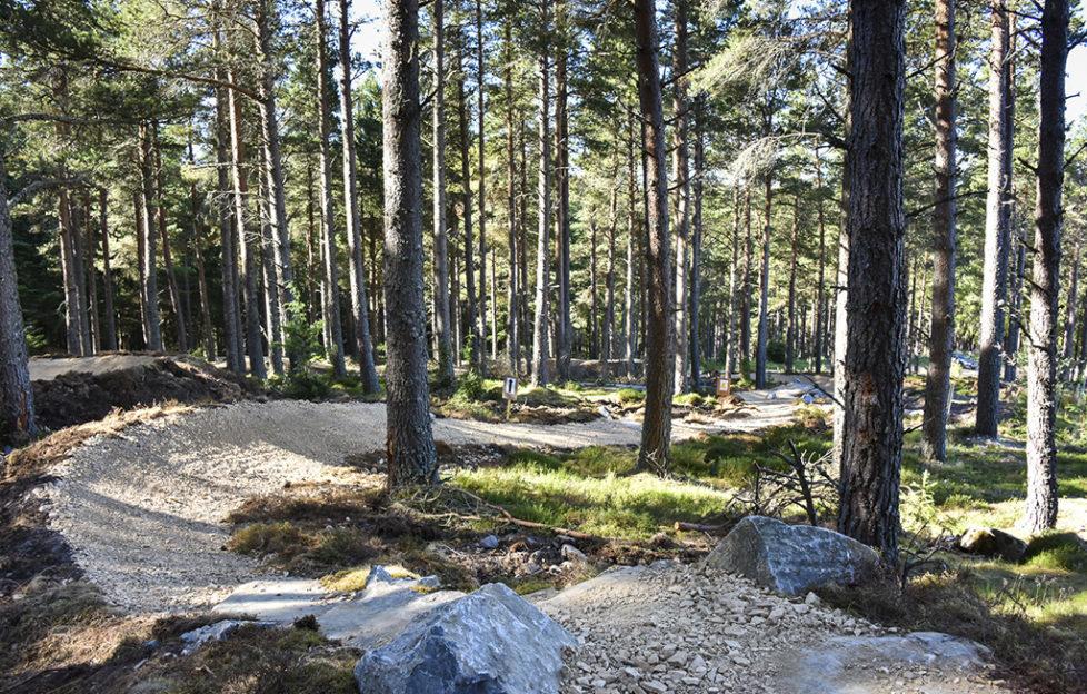 Glenlivet Mountain Bike Trail Centre skills area