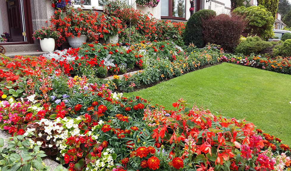 Blooming great gardens are all winners - Scottish Field